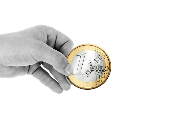 držení eura.jpg